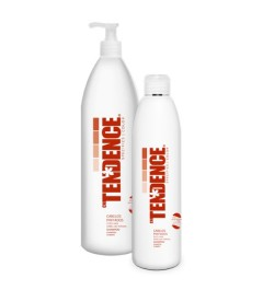 Tendence TD-Color Shampoo para Cabelos Pintados
